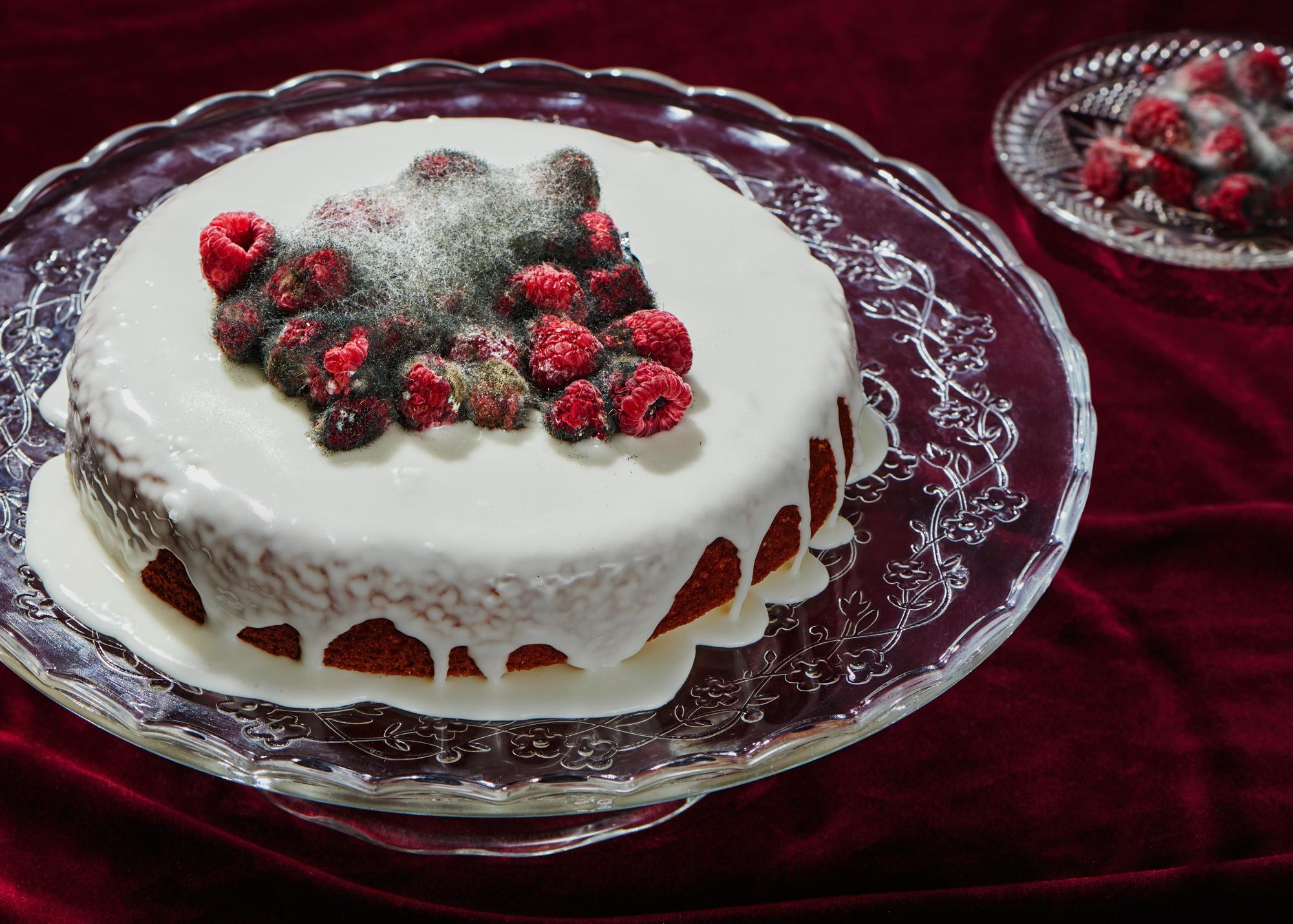 Spoiled-Rotten-Cake-Yasara-Gunawardena